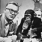 J Fred Muggs - Today show